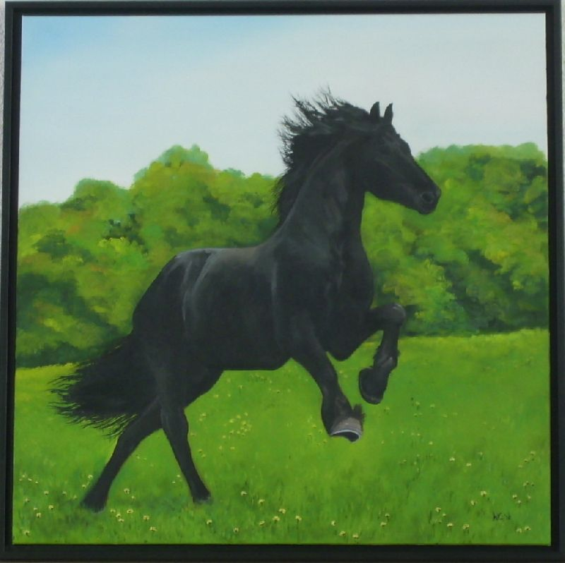 1278847113Nfries_paard_opdracht